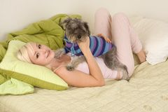 Young woman in bed playing with schnauzer dog. Caucasian blond young woman lying down on bed and holding dog of Schnauzer breed Royalty Free Stock Photography