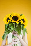 A Young Woman Behind A Bunch Of Sunflowers Stock Photo