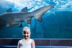 Young woman behind a shark tank looking at camera Stock Images