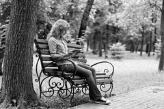 Young woman on a bench reading a book Stock Photos