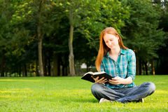 A young woman with a Bible in a park royalty free stock images