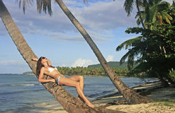Young woman in bikini laying on leaning palm tree, Las Galeras b Royalty Free Stock Photos