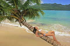 Young woman in bikini laying on leaning palm tree at Rincon beac. H, Samana peninsula, Dominican Republic Royalty Free Stock Photo