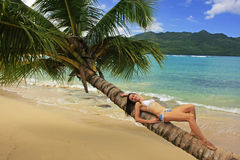 Young woman in bikini laying on leaning palm tree at Rincon beac Stock Photography