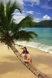 Young woman in bikini sitting on leaning palm tree at Rincon bea Royalty Free Stock Photo