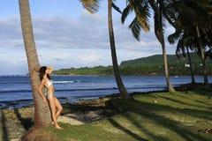 Young woman in bikini standing by palm tree, Las Galeras beach. Samana peninsula, Dominican Republic Royalty Free Stock Photo