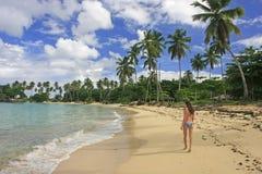 Young woman in bikini walking at Rincon beach, Samana peninsula. Dominican Republic royalty free stock photos