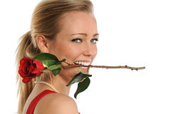 Young Woman Biting Rose Stock Photography