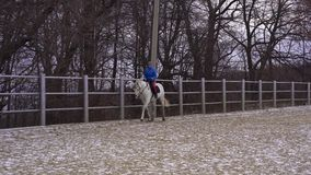 A young woman in a blazer and sports hat is riding a white horse in a fenced area. Cloudy winter day stock footage