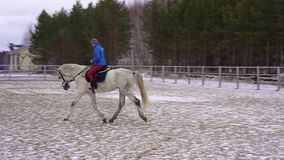 A young woman in a blazer and sports hat is riding a white horse in a fenced area. Cloudy winter day stock video footage