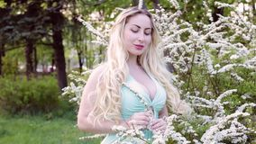 Young woman in flowering trees. Young woman blonde in the garden of flowering trees stock footage