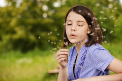 Young woman blowing on dandelion Stock Images