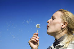 Young woman blowing dandelion seeds royalty free stock photography
