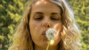 Young woman blowing dandelion in slow motion stock footage