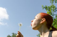 Young woman blowing dandelion Royalty Free Stock Images
