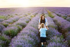 Young woman in blue dress walk on purple lavender flower meadow field background, catch up, have fun, play with little stock photography