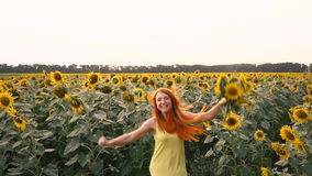 Young woman bobbing up in field of sunflowers, slow motion stock video footage