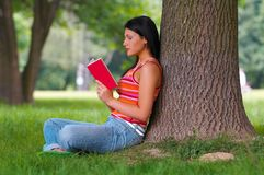Woman in park. Young woman with book in park Stock Image