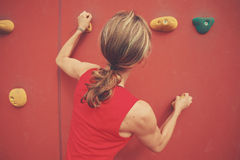 Young woman bouldering Stock Photography