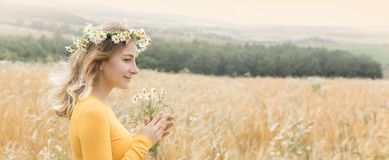 Young woman in a wheat field. royalty free stock photography