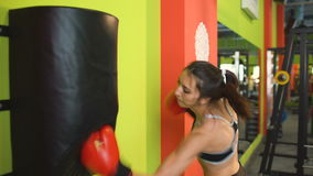 Young woman boxer hit punching bag during pre-match warm-up in boxing club. Indoors stock video