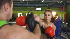 Young woman boxer training pre-match warm-up in the boxing ring with her trainer. In box club stock footage