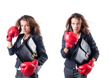 The young woman with boxing gloves isolated on white Royalty Free Stock Image