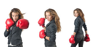 The young woman with boxing gloves isolated on white Royalty Free Stock Photos