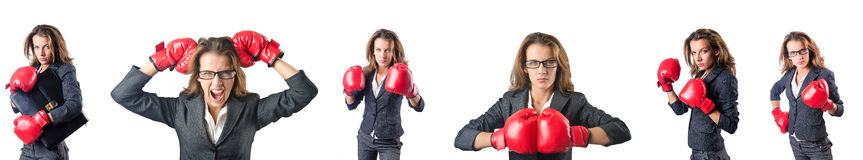 The young woman with boxing gloves isolated on white Stock Photography