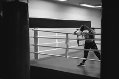 Young woman in boxing gloves on a ring Royalty Free Stock Image