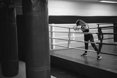 Young woman in boxing gloves on a ring Stock Image
