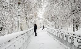 Woman with baby on bridge in winter in park royalty free stock photography