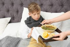 Young woman bringing broth to her sick son in bed. Cold treatment royalty free stock photography