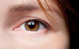 Young woman brown eye macro Stock Images