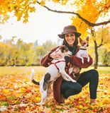 Woman with two dogs playing outside in autumn leaves Stock Image