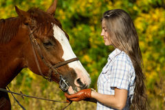 Young woman with a browne horse Stock Image