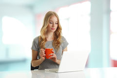 Young woman browsing on computer Royalty Free Stock Photo