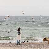 Young woman brunette in a white coat feeds the gulls on the be Stock Image