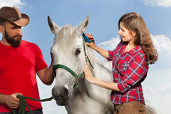 Young woman brushing beautiful white horse Stock Photos