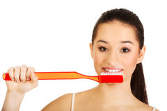Young woman brushing her teeth. Woman brushing her teeth with enormous brush Stock Photo