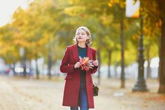 Young woman with bunch of colorful autumn leaves royalty free stock images