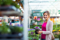 Young woman buying flowers at a garden center Royalty Free Stock Images