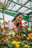 Young woman buying flowers Royalty Free Stock Photography