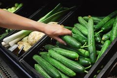 Young woman buying fresh cucumbers Stock Photography
