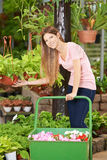 Young woman buying plants in nursery shop Stock Photography