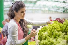 Young woman buying vegetables on the market Stock Image