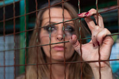 Young woman in cage. Long hair girl in cage Royalty Free Stock Images