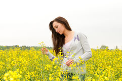 Young woman in canola field Stock Photography