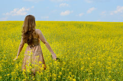 Young woman at canola field Stock Photos