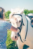 Young woman caressing beautiful white horse. Friendship, partnership and trust concept. Stock Photos